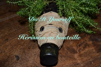 Do It Yourself hérisson en bouteille