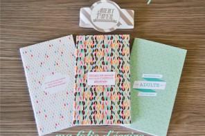 agent paper : de nouveaux carnets pour ma folie d'écrire