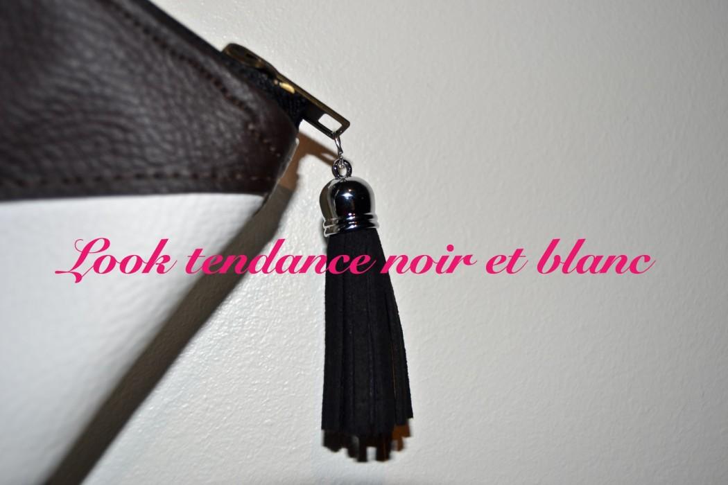 pochette noire et blanche