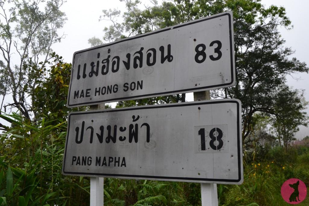 notre road trip au nord de la thaïlande