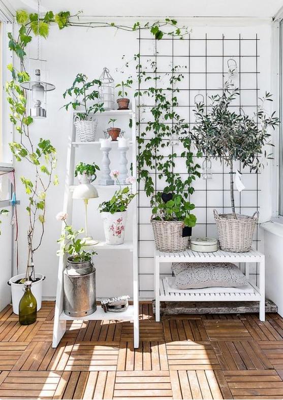 deco pour plantes