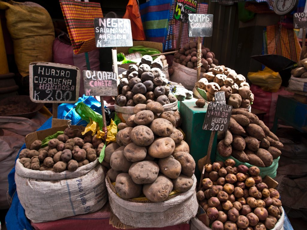 pommes de terre du Pérou