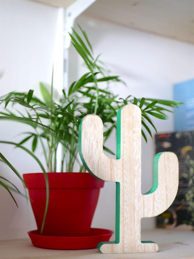 deco cactus bois